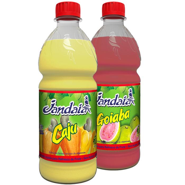 packshot-jandaia-sucos-concentrados2